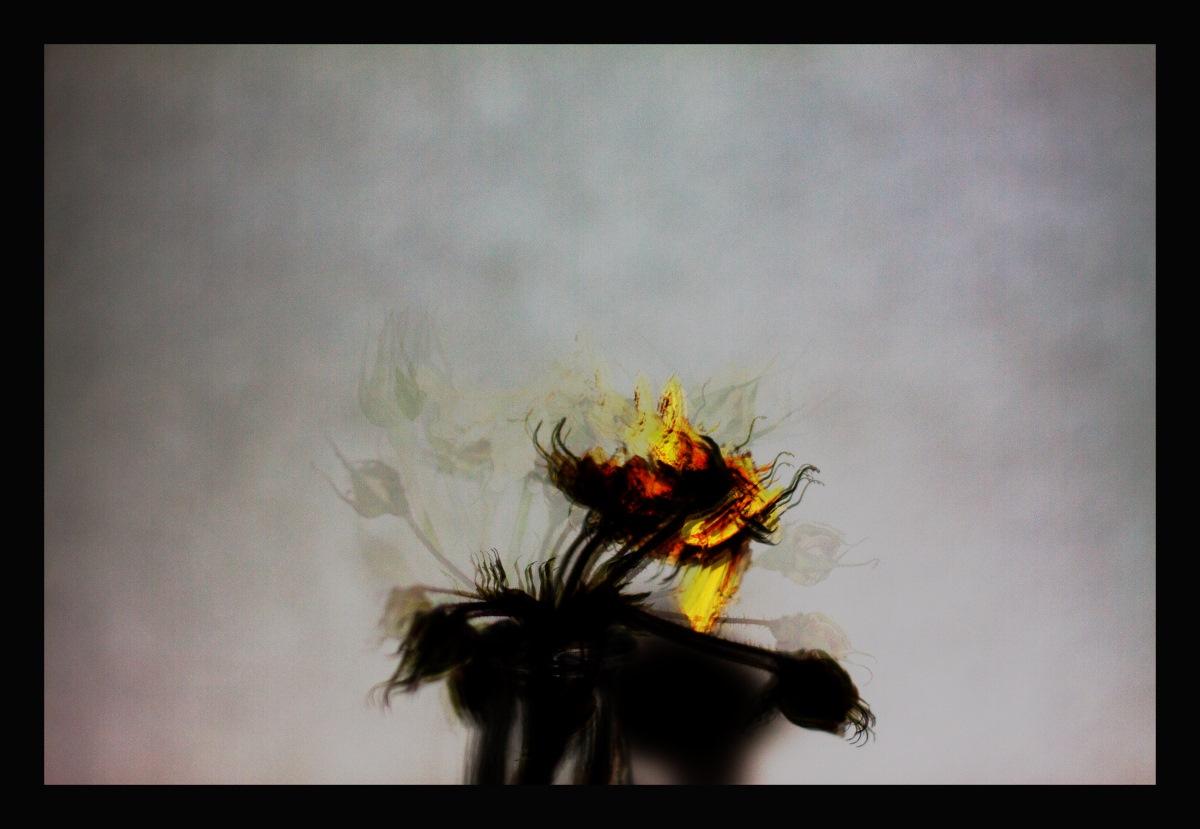 Blumenzyklus